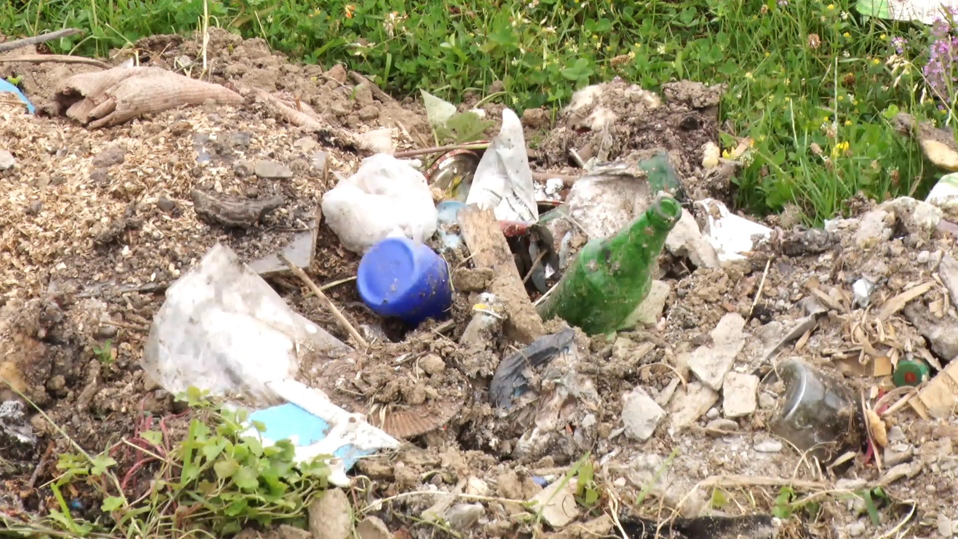 У закарпатському Березові сміттєвих хуліганів присоромлять (ВІДЕО)