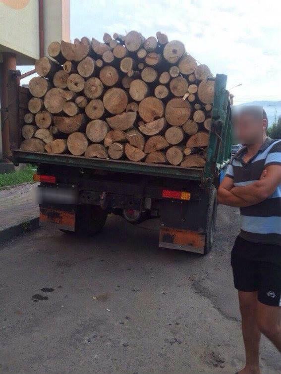 У Сваляві виявили вантажіву, яка перевозила бук без будь-яких дозвільних документів