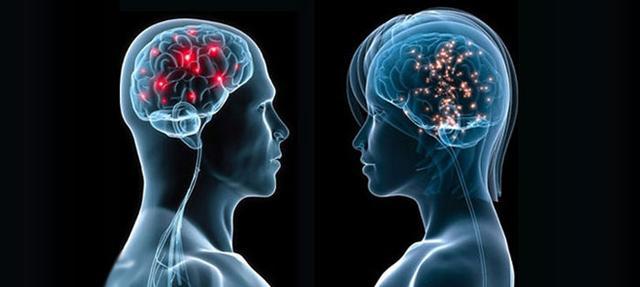 Визначено особливість роботи жіночого мозку, на яку чоловіки не здатні