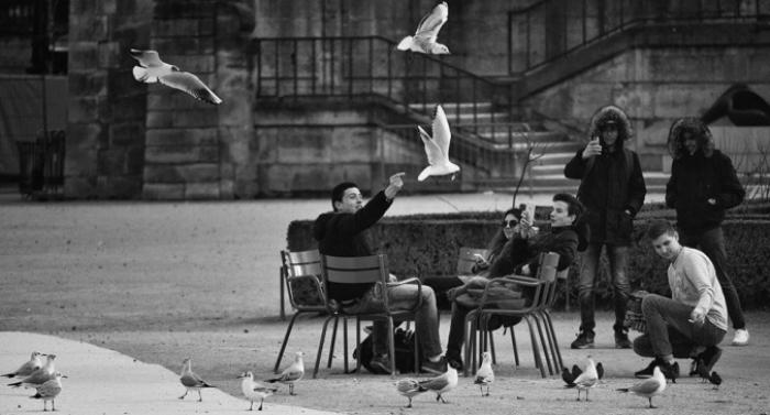 Paris Contrasts: ужгородець Василь Прокопишин випустив книгу про найромантичніше місто світу