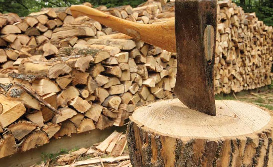 Тячівські лісівники озвучили «дров'яний прайс»