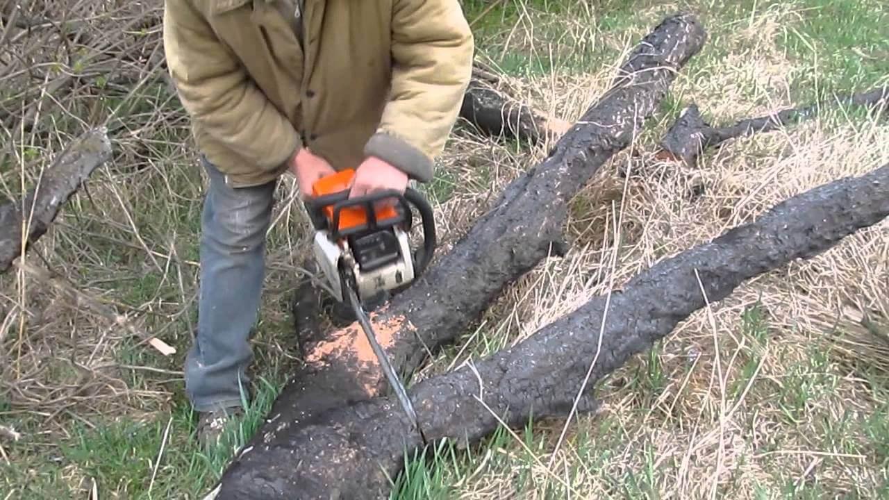 Трагедія на Великоберезнянщині: чоловік помер під час заготівлі дров