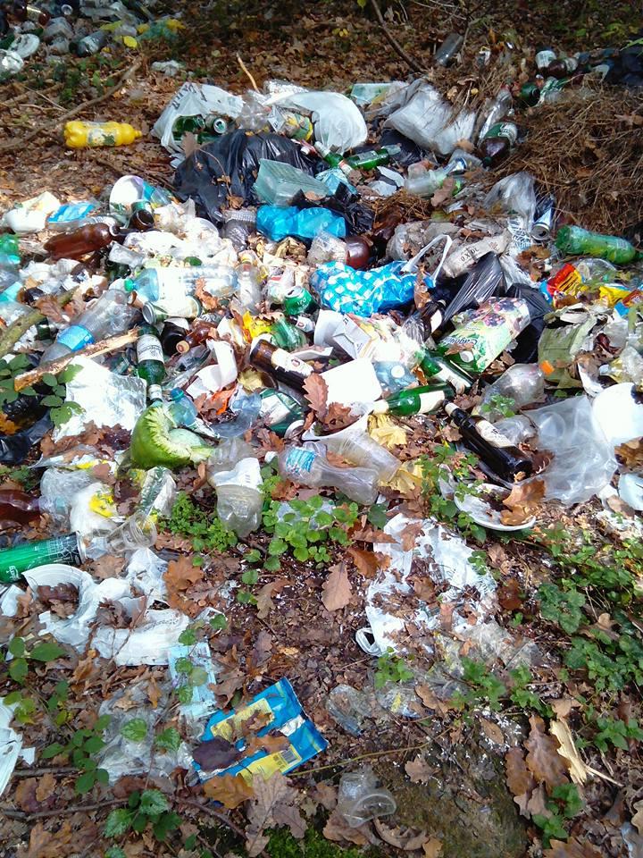 Закарпатці, схаменіться! Досить вивозити сміття в ліс!