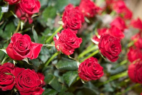 У Виноградові злодій з квіткового базару вкрав вазу з п'ятдесятьма трояндами
