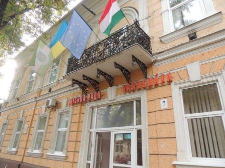 Свобода намагалася спалити угорський прапор в Берегові (ВІДЕО)