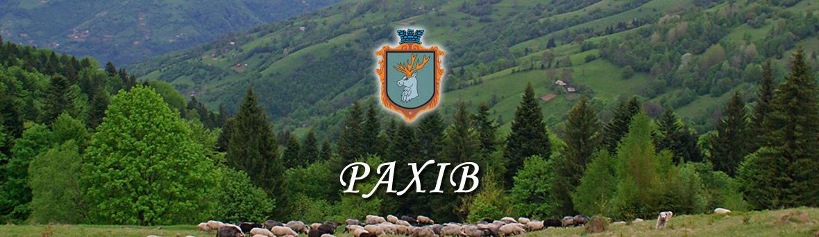 Закарпатське містечко Рахів — місто рекордсмен в Україні
