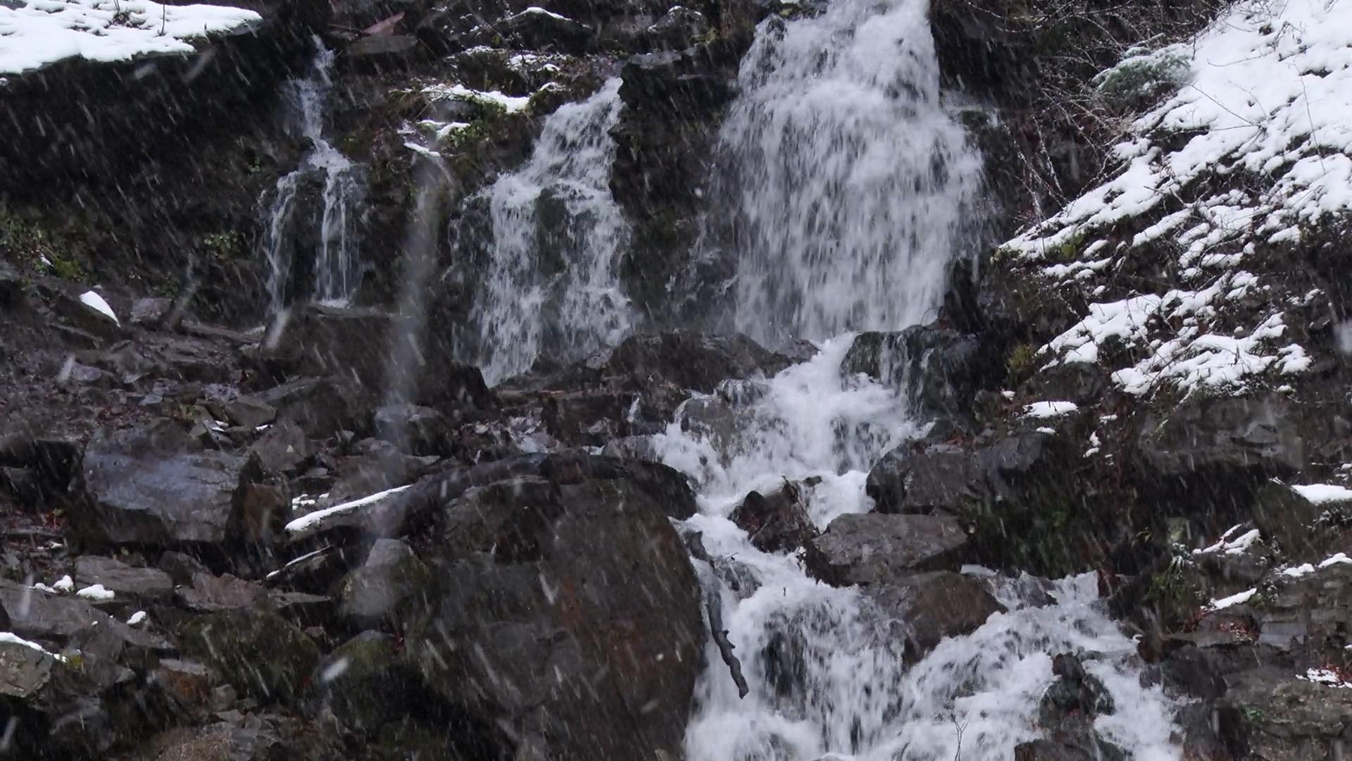 Найвищий водоспад Закарпаття облаштують новою оглядовою альтанкою (ВІДЕО)