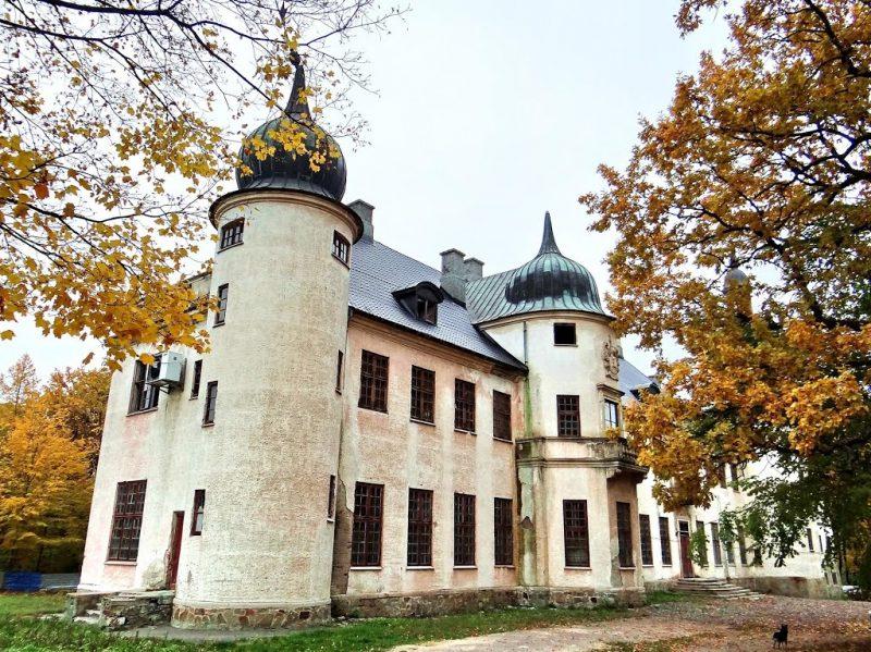 Невицький замок входить до фотопідбірки Забутих Палаців України