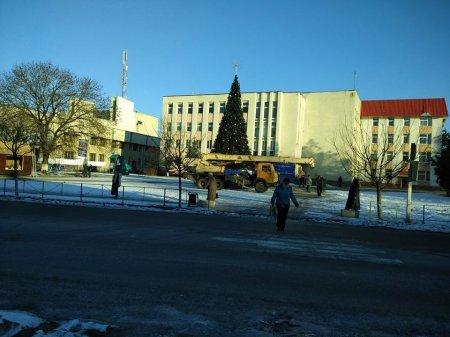 В Іршаві попрощалися з головною ялинкою міста