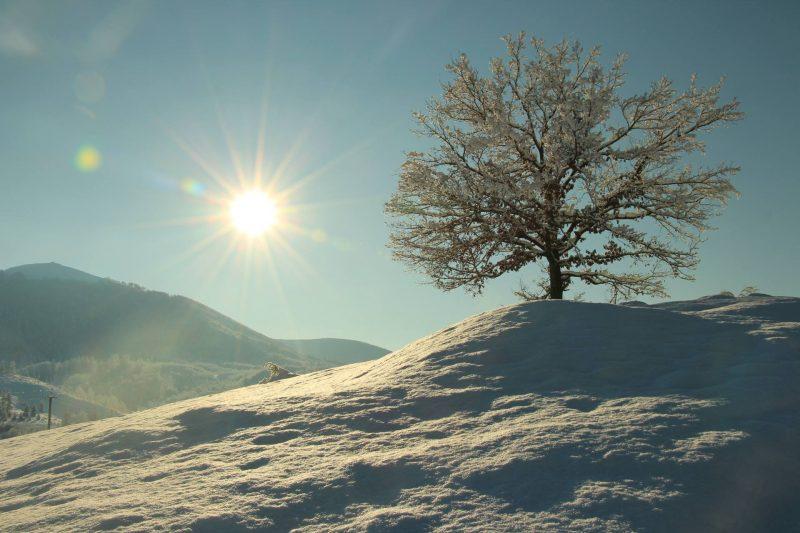 Краса зимового Закарпаття : Воловець