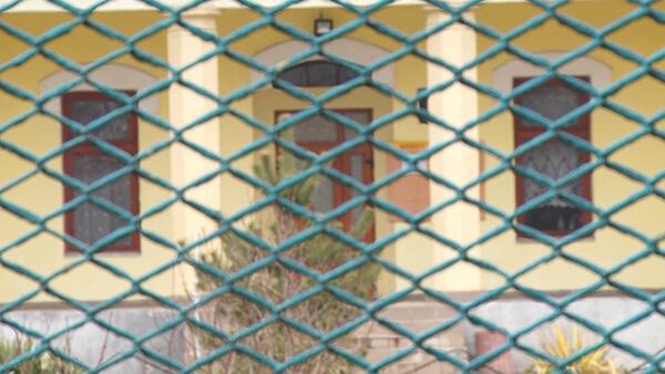 З початку лютого на Виноградівщині оголошено карантин (ВІДЕО)
