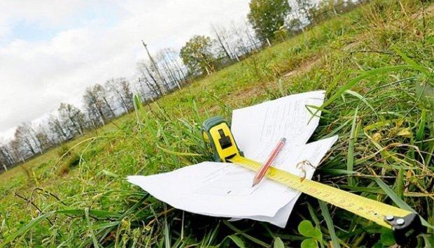 На Перечинщині посадовець Держкомзему незаконно вивів з державної власності 3 га земель лісового фонду