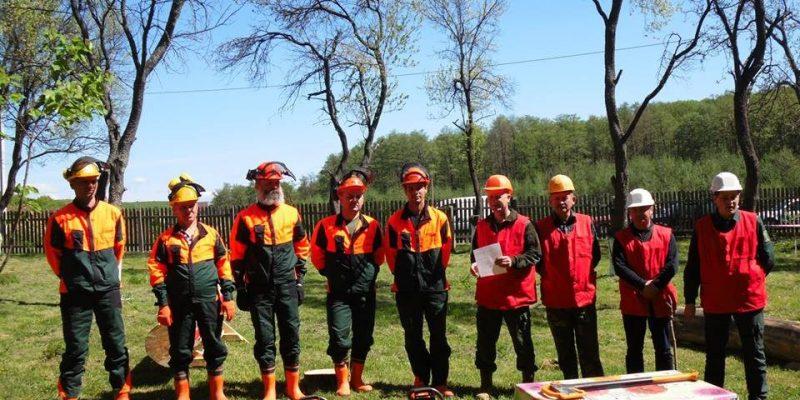 Виноградівські лісівники змагалися за звання кращого вальника лісу