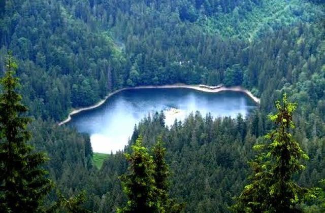 Синевирське озеро приваблює не тільки красою