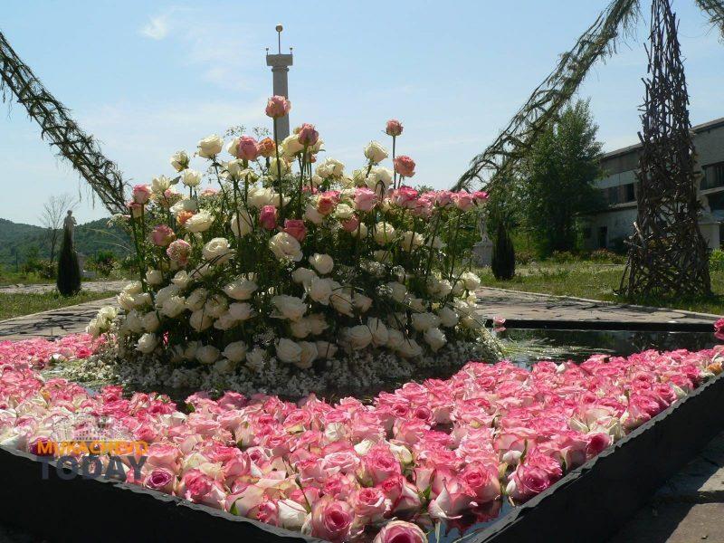 У замку «Сент-Міклош» на Мукачівщині насолоджувались квітковим раєм (ФОТО)