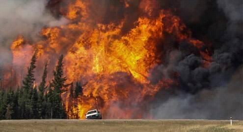 Увага! В останній день травня на Закарпатті збережеться високий рівень пожежної небезпеки