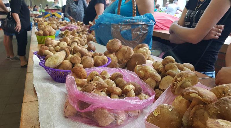 Скільки коштує літній урожай грибочків на закарпатських ринках?