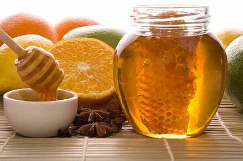 Цілющі властивості натурального меду на Закарпатті