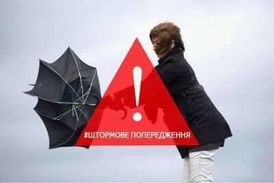 На Закарпатті в другій половині дня 25 червня очікуються дощі та грози