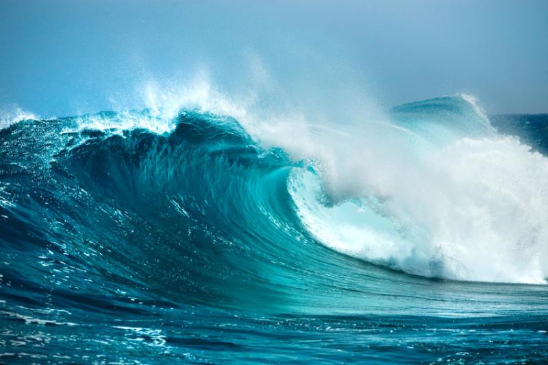 Масштаби впливу людини на Світовий океан розрахували екологи