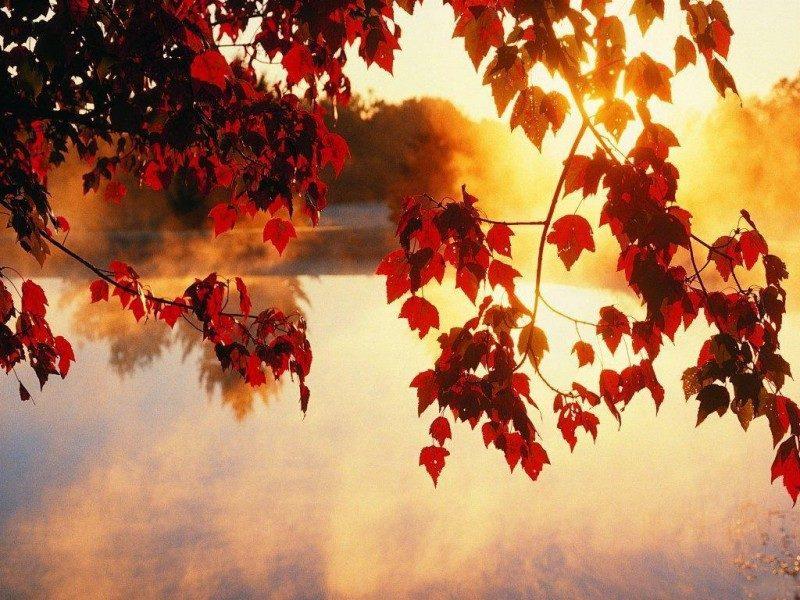 На Закарпатті буде теплий вересень, – синоптики