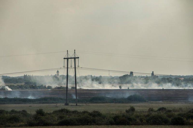 Густий дим зафіксували біля села Геча на Берегівщині. Горять поля (ФОТО, ВІДЕО)