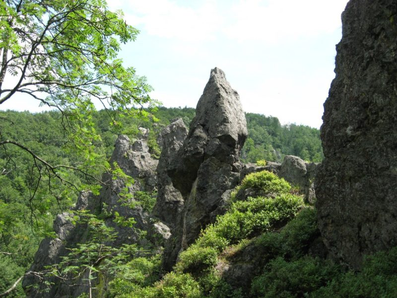 """""""Зачарована долина"""" на Закарпатті (ФОТО)"""