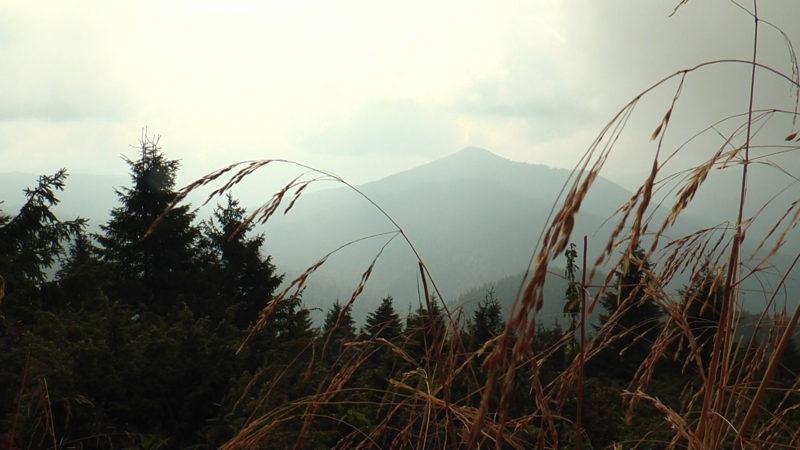 Чому українські Карпати кращі за швейцарські Альпи? (ВІДЕО)