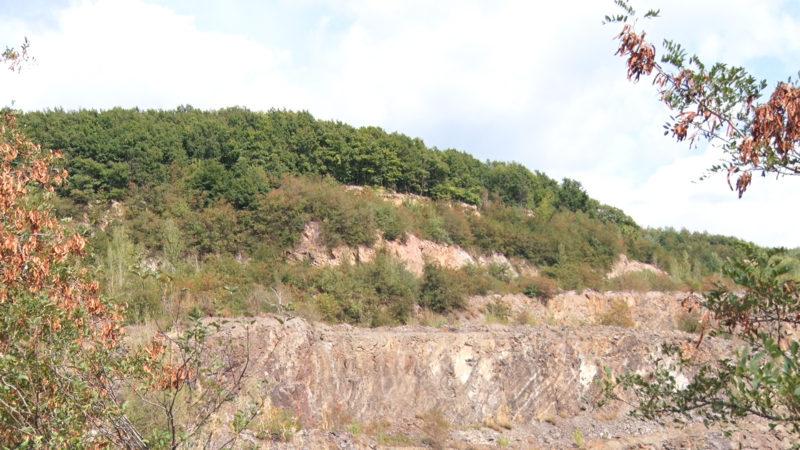 На Виноградівщині унікальні археологічні знахідки Королівської стоянки досі поза увагою (ВІДЕО)