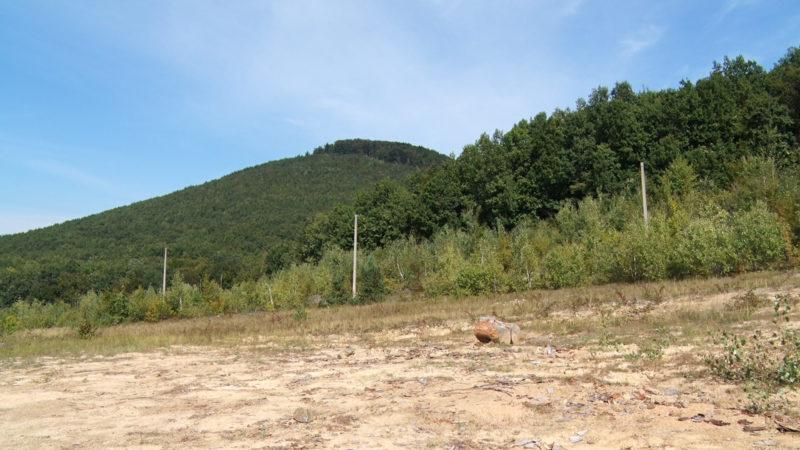 На Виноградівщині передбачені чималі площі для розвитку зеленого туризму (ВІДЕО)