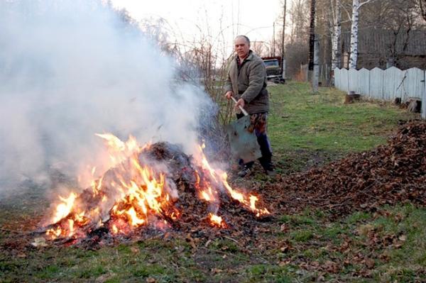 За спалювання листя на Закарпатті передбачена сплата штрафу