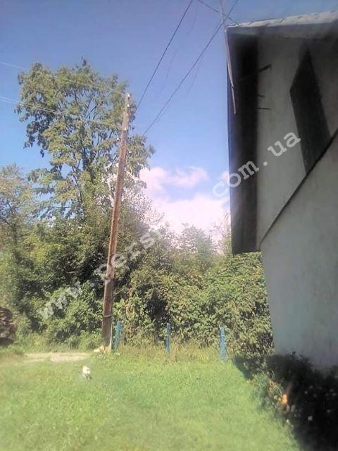 У селі на Тячівщині на людей чатує небезпека: прогнилі електроопори можуть впасти в будь-яку хвилину (ФОТО)