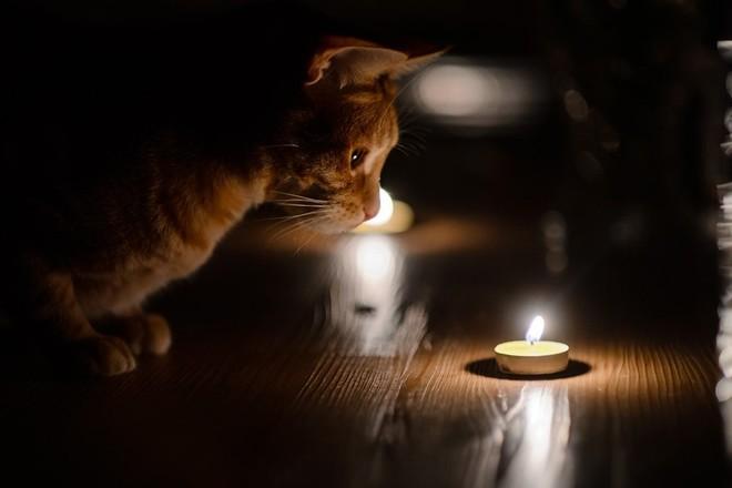 На Закарпатті з 1 по 5 жовтня будуть відключати світло (ТАБЛИЦЯ ПЛАНОВИХ ВІДКЛЮЧЕНЬ ПО ВСІХ РАЙОНАХ)