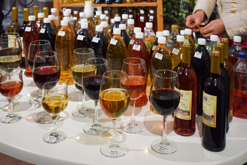 На Закарпатті вже смакують молоде вино