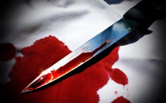 Криваве вбивство на Виноградівщині: вбивцю примусово госпіталізували
