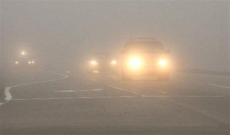 На Закарпатті розпочалась небезпечна пора для водіїв