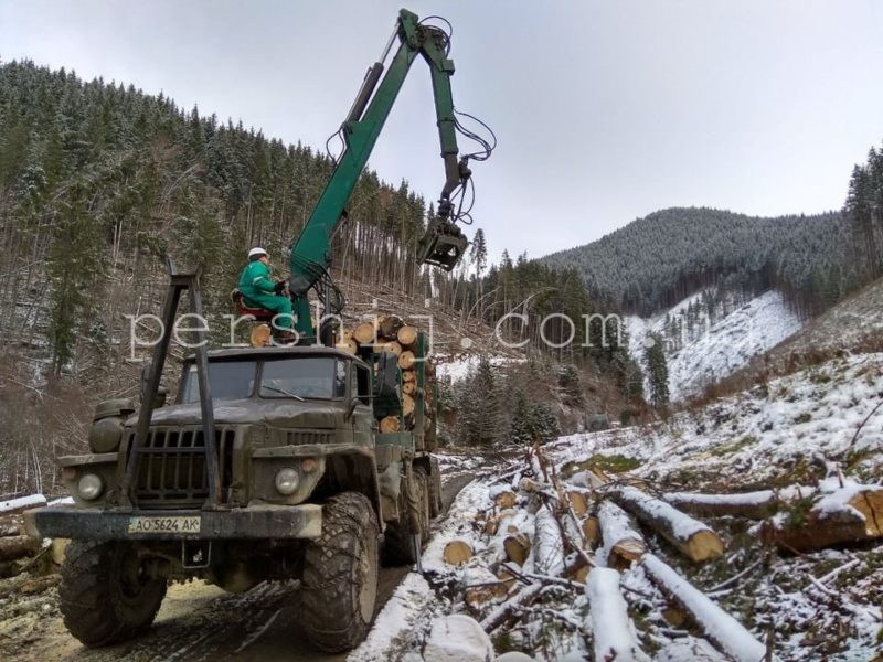 Боротьба з наслідками стихії: лісівники Рахівщини розчищають ліс від завалів