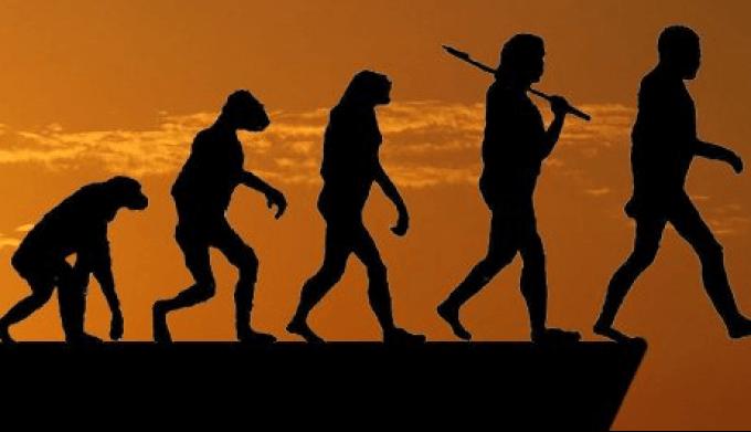 Премія Дарвіна: найбезглуздіші смерті в історії