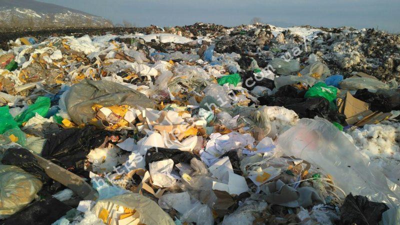 На Виноградівщині критична ситуація з приводу неналежного вивезення сміття (ФОТО)