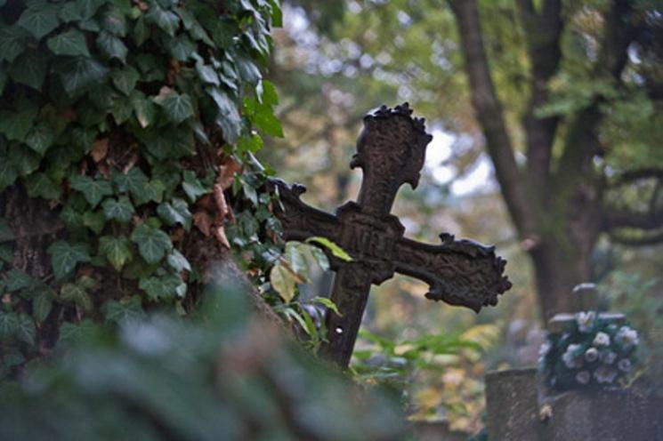 На Закарпатті перевірять цвинтарі