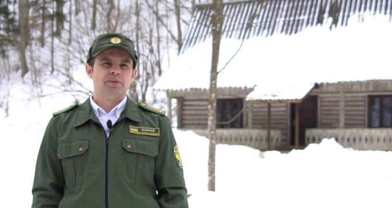 Будиночки, що можуть врятувати життя, – відкривають у лісах Закарпаття (ВІДЕО)