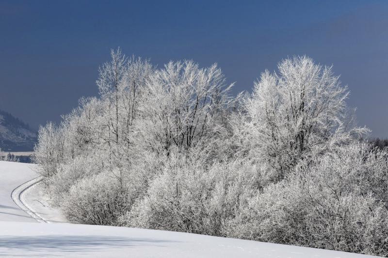 Закарпатська зима – на сторінках National Geographic (ФОТО)