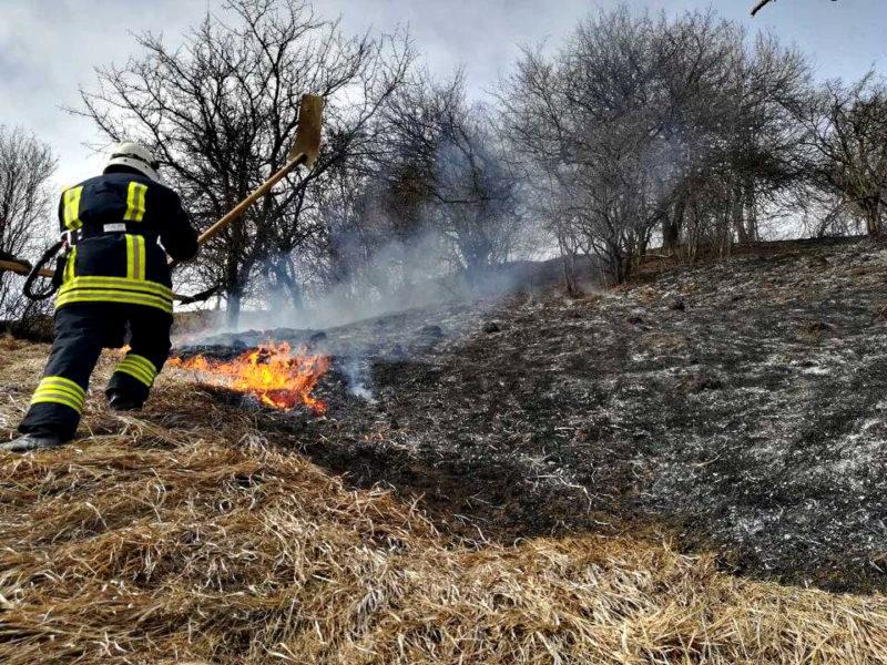 На Закарпатті випалювання сухої трави ледь не залишило місцевих жителів без даху над головою (ФОТО)