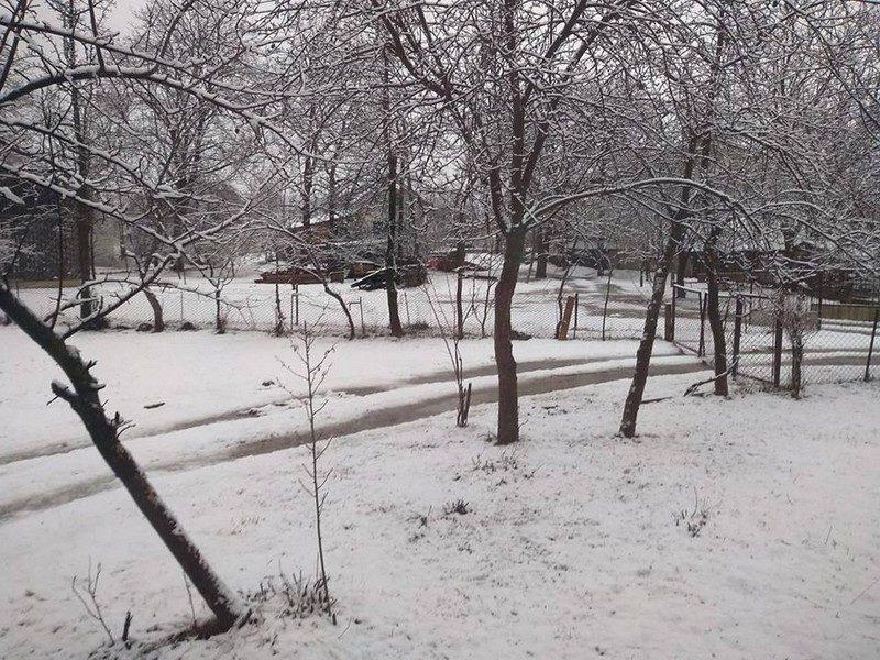 Шістнадцятий день весни: Тячівщину замело снігом (ФОТО)