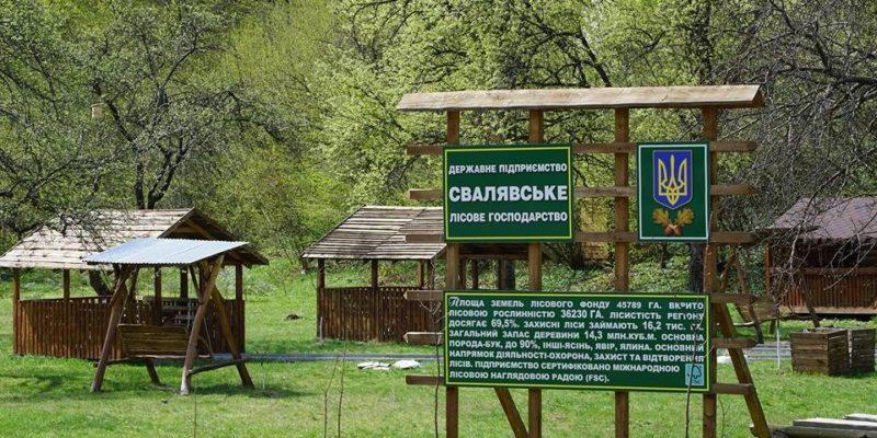 Нову відпочинкову зону для туристів обладнали на Свалявщині