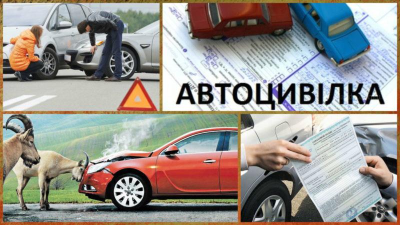 До уваги водіїв: тепер керманичі не зобов'язані пред'являти паперовий примірник автоцивілки (ДОКУМЕНТ)