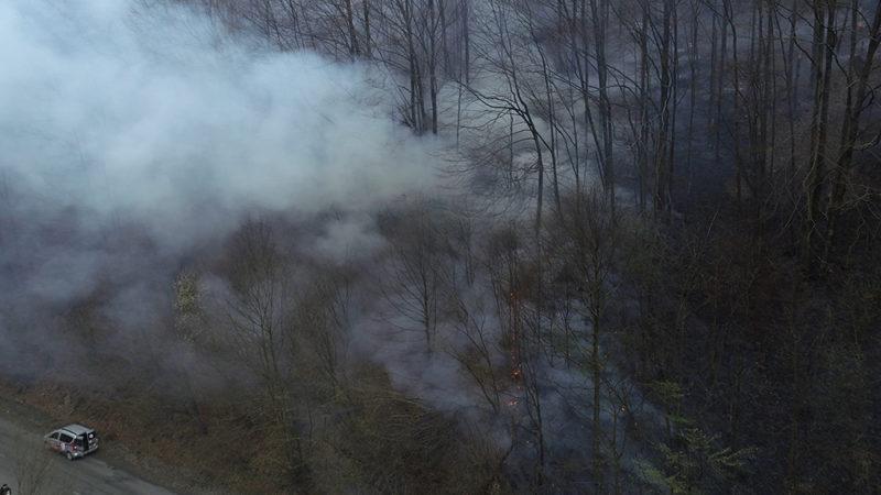 На Міжгірщині почастішали підпали сухого листя у лісах (ВІДЕО)