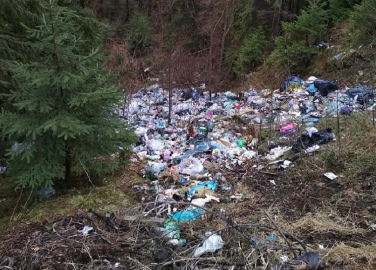 Всесвітньовідомі Карпати жителі краю перетворюють на суцільні смітники (ФОТО)