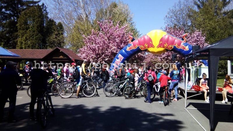 Понад 300 велосипедистів проїхалися Мукачевим в рамках сакурового велозаїзду (ФОТО, ВІДЕО)