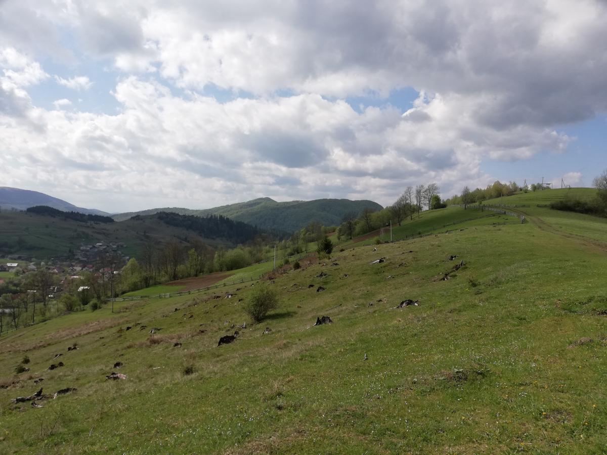 На Закарпаття в гори: затишний Воловець, мальовничий Синевир та курортний Пилипець